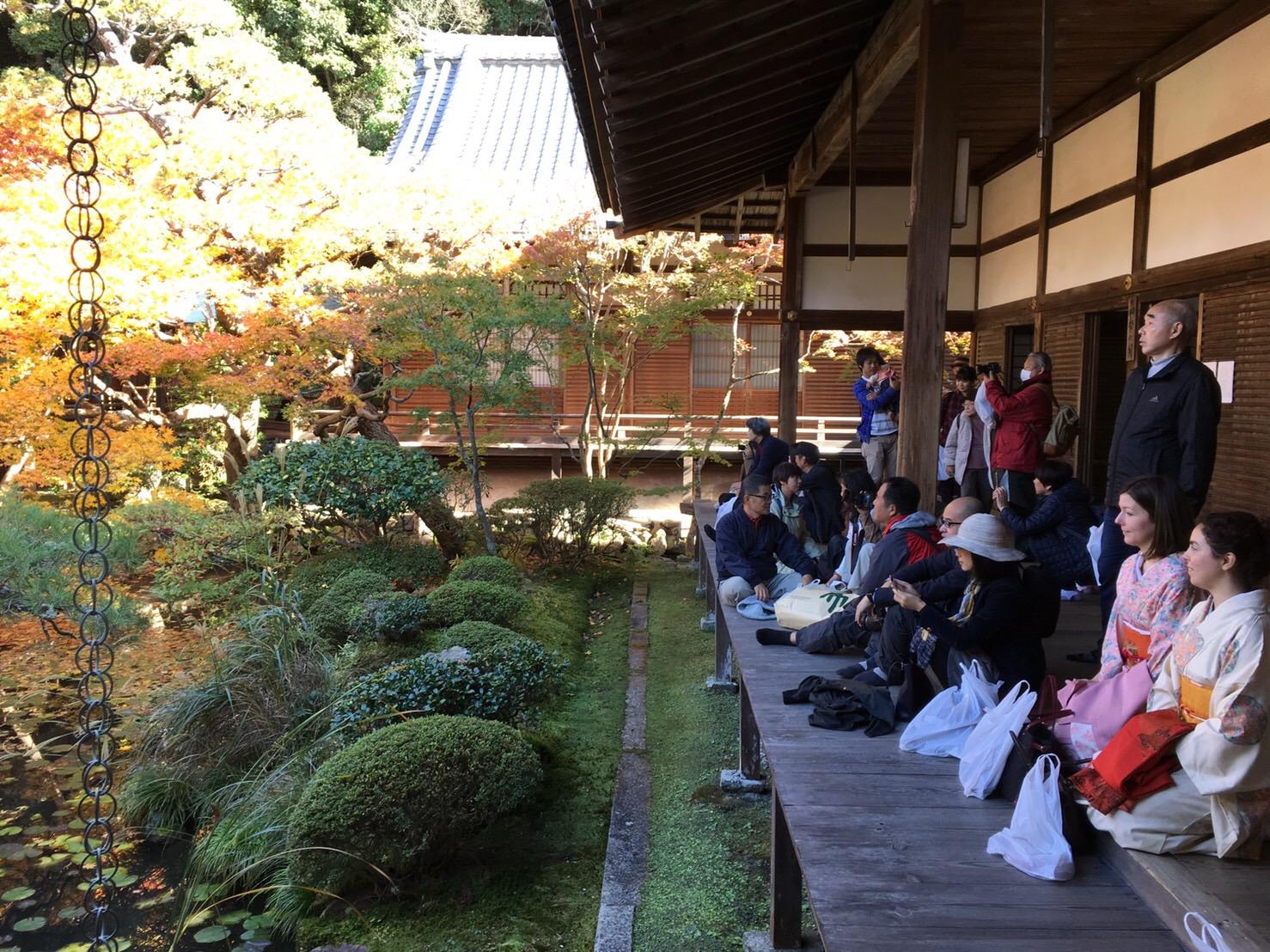 Kimono Eikando